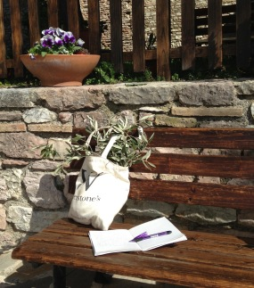 Writing in Umbria